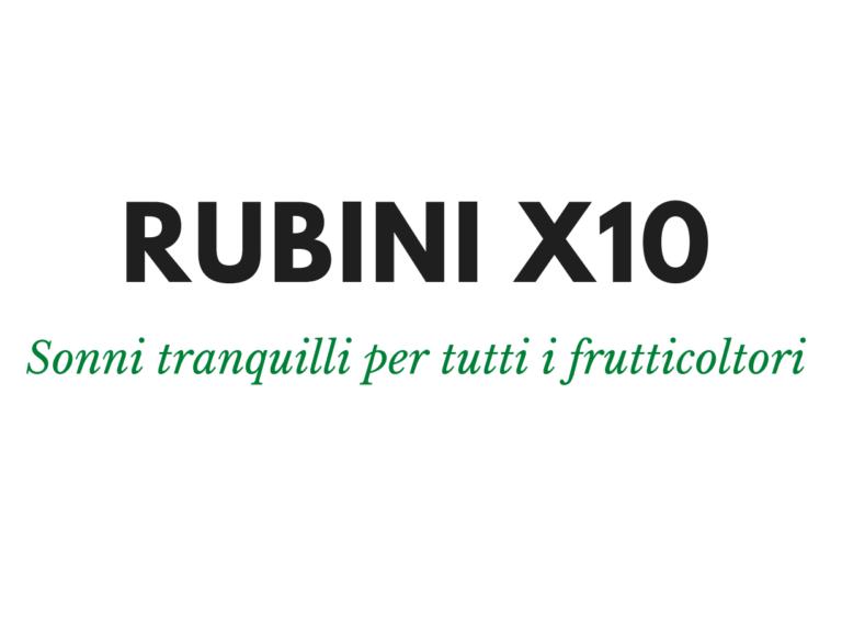 Rubini x10